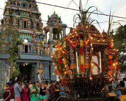 Negombo: kletterende kokosnoten, prachtige jurken en een kalme olifant