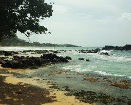 Mirissa: een betovering aan de Sri Lankaanse zuidkust