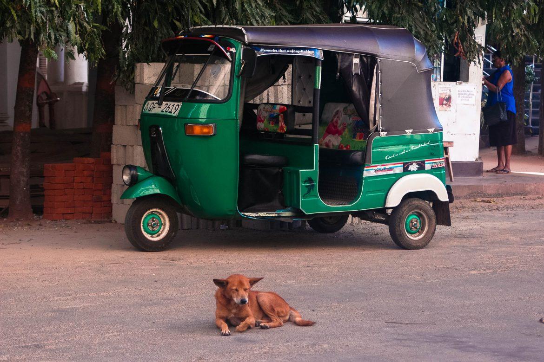 7 praktische reistips voor reizen door Sri Lanka