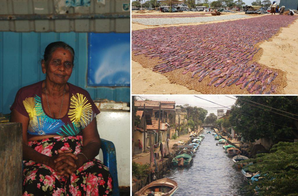 Negombo reisroute sri lanka