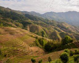 Het artistieke landschap van de rijstvelden van Longji, China