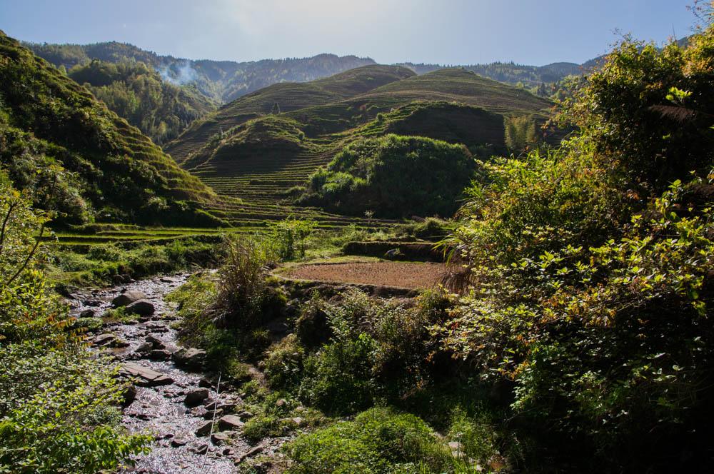 rijstvelden van Longji