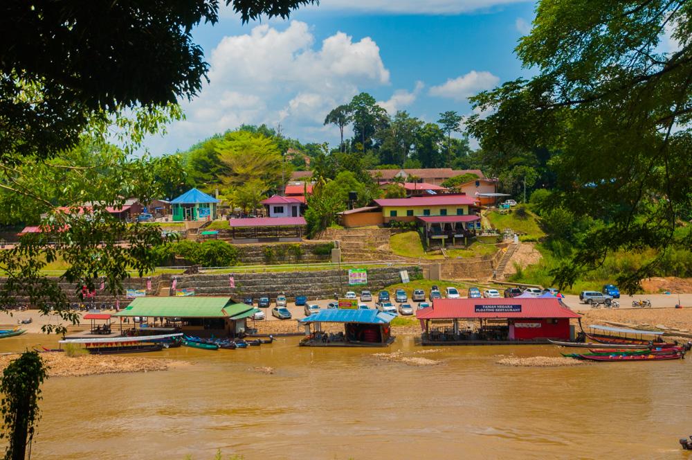 Een uitputtingsslag in het regenwoud van Taman Negara, Maleisië + tips