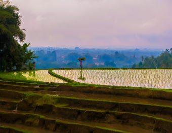 Reisfotografie: Java in 25 beelden, Indonesië