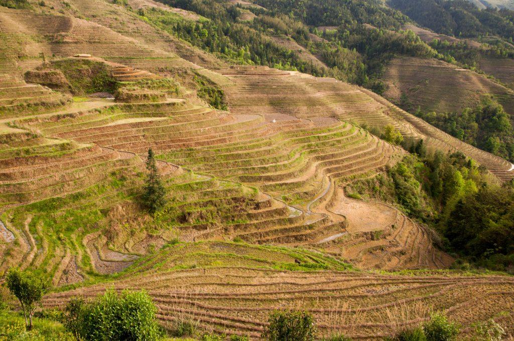 statief meeneem op reis - rijstvelden van Longji in China