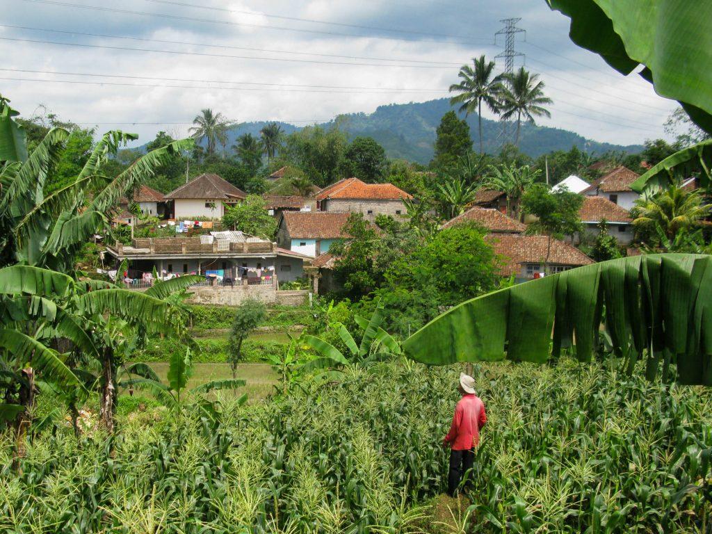 Backpack route door Indonesië - dorpje nabij Cianjur