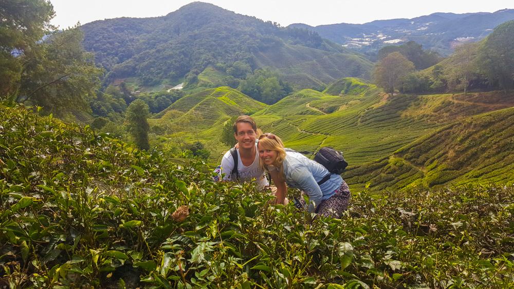 statief meeneem op reis - Cameron Highlands in Maleisië