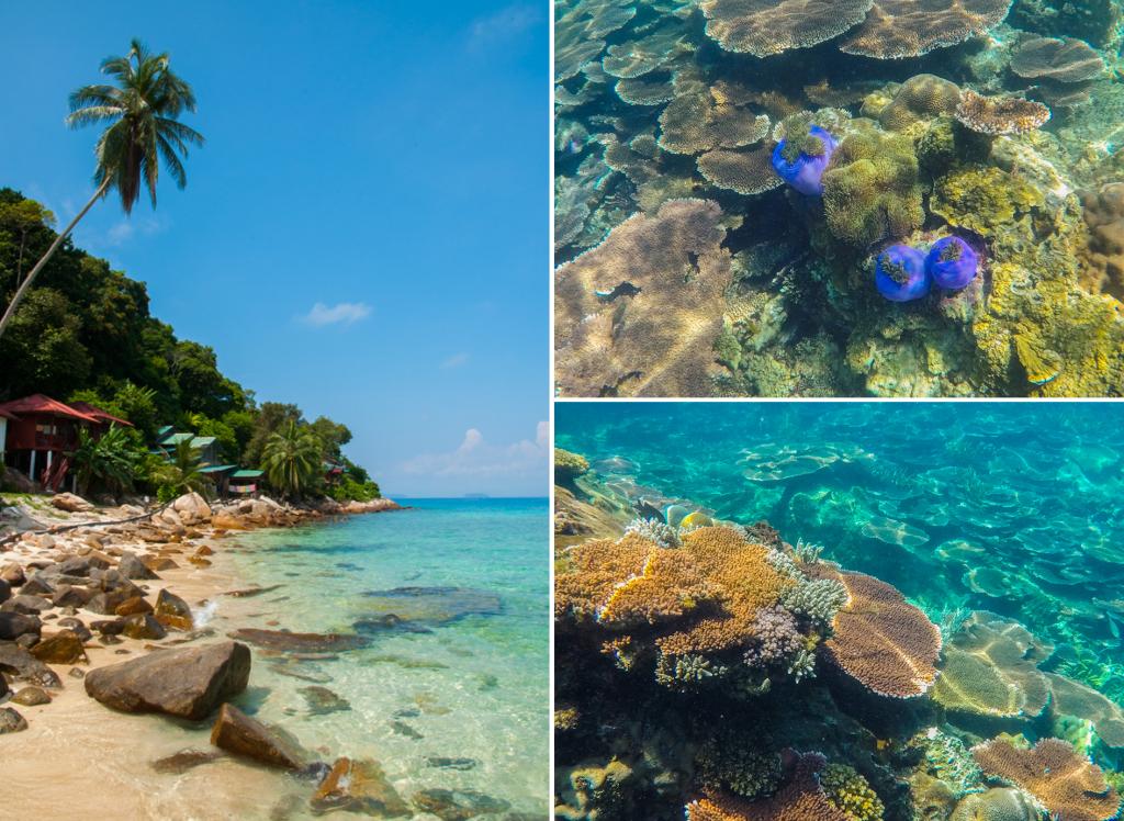 Tips voor de Perhentian Islands - collage