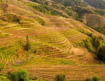 15 redenen om China op je bucketlist te zetten