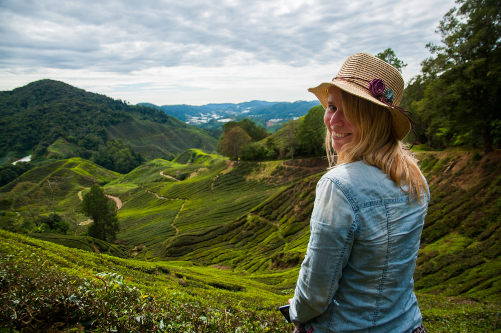 backpacken in Maleisië - Cameron Highlands