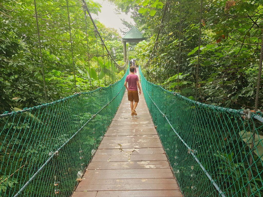 doen in Kuala Lumpur - canopy walk