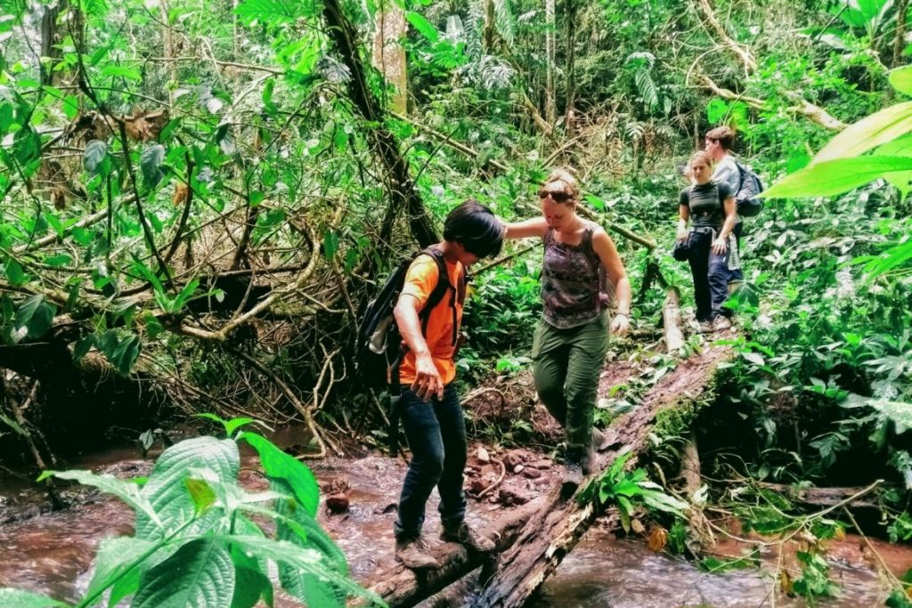 backpackroute Laos - jungle trekking Luang Namtha
