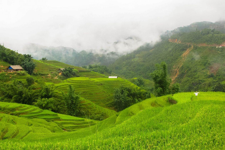 Visum Vietnam aanvragen: dit moet je weten